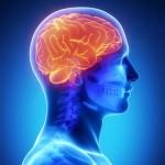 Nutrition for Seizures